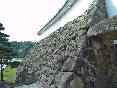 Tsuruga_7.jpg