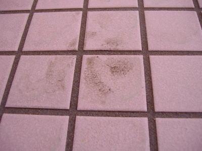 お風呂の足跡