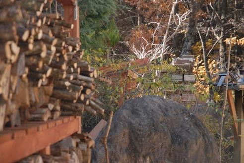 八ヶ岳自然文化園 003