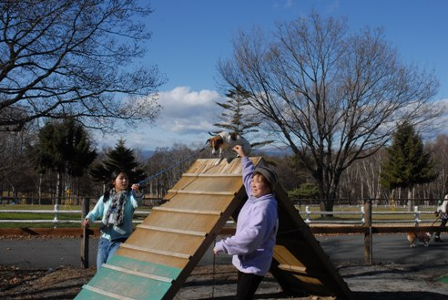 八ヶ岳自然文化園 041