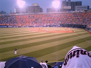 baseball_ym.jpg