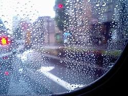 window_in_the_rain.jpg