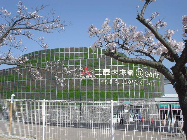 桜と三菱未来館