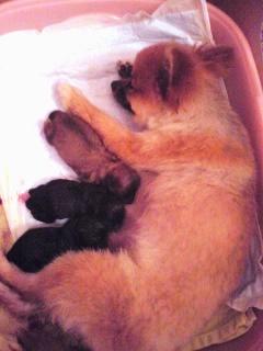 出産1日目