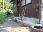 haruniwa-070428.jpg