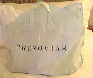 dress_bag.jpg