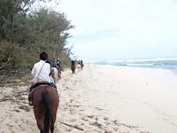horsebackriding001.jpg