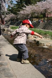 kick !! 20090411 さくら