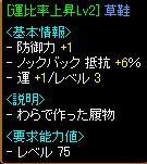 20060619225135.jpg