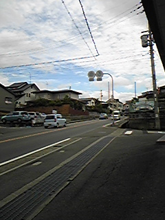Image543.jpg