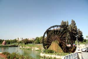 2005081474.jpg