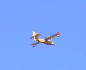 2007121617.jpg