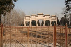 2008012002.jpg