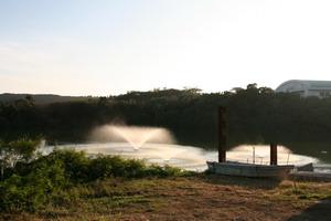 2008022607.jpg