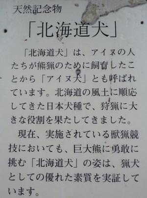 2008081504.jpg