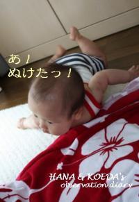 11_convert_20090828152846.jpg