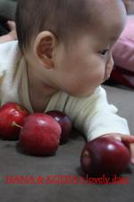 apple6.jpg