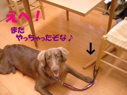 gaji333.jpg