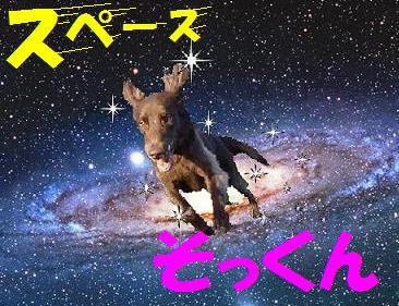space_jpg_20081209114318.jpg