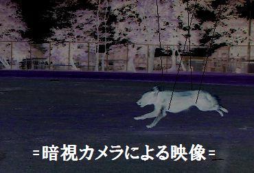 yakanhikou.jpg