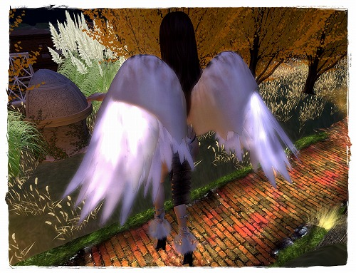 20090921_2_qnajSnapshot_041.jpg