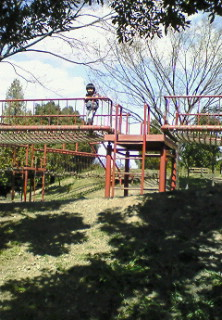 20090329114935