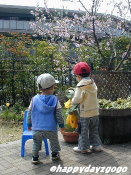 ある春の日