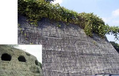 箕輪洞谷横穴墓群(ミノワドウヤトオウケツボグン)