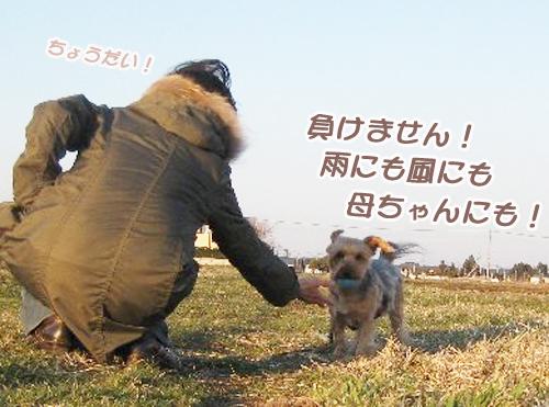 字余り川柳