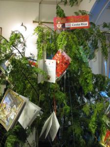コスタリカのツリー