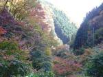 狭岩峡の紅葉