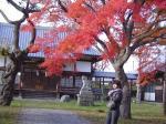 五稜郭の見事な紅葉