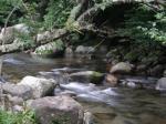 キャンプ場横の川