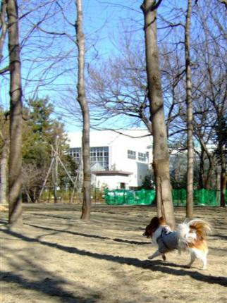20060126171319.jpg