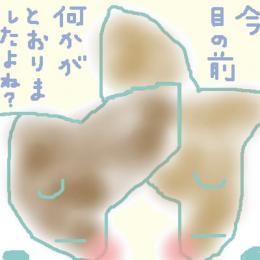 20061004182946.jpg