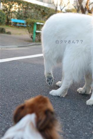 20070302-03.jpg