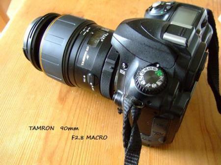 DSCF4076_20080617214708.jpg
