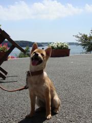 浜名湖だぜぃ!