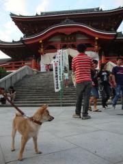 お寺は落ち着くのぉ。