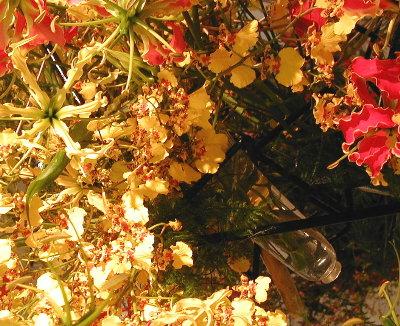 為永さん作ガラスの花器