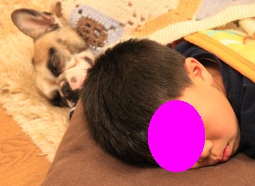 眠い颯太とトル2