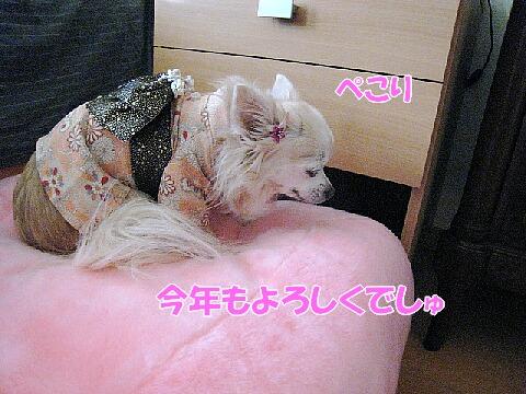 IMG_0707-2.jpg