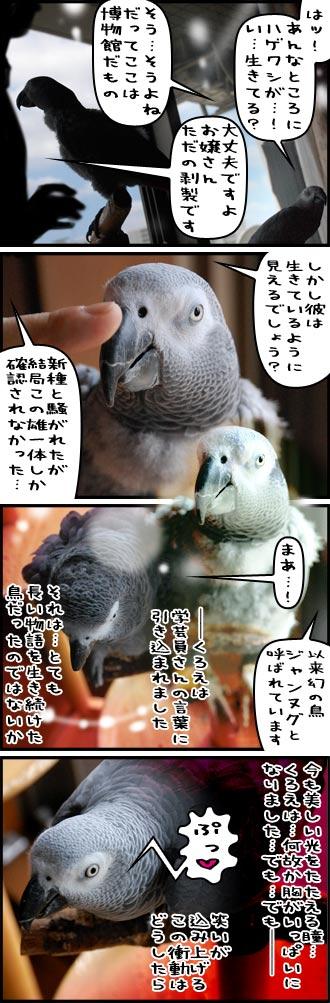 じゃんくろ劇場-No.41