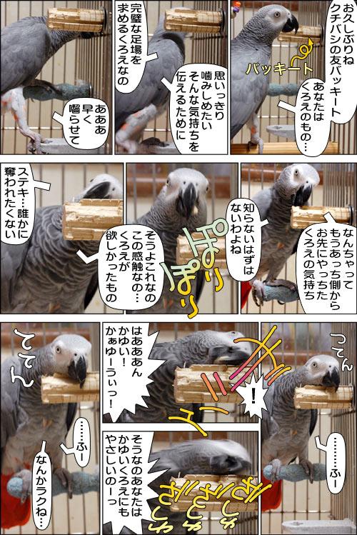 ノンフィクション劇場-No.30