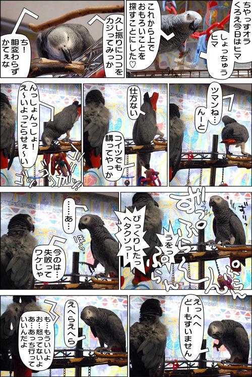 ノンフィクション劇場-No.31