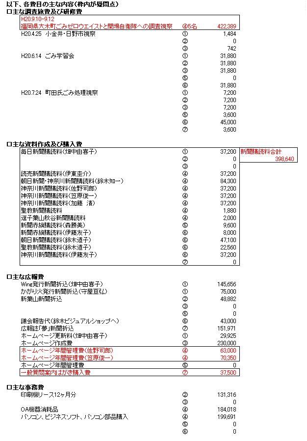 H20年度葉山町議員政務調査費B