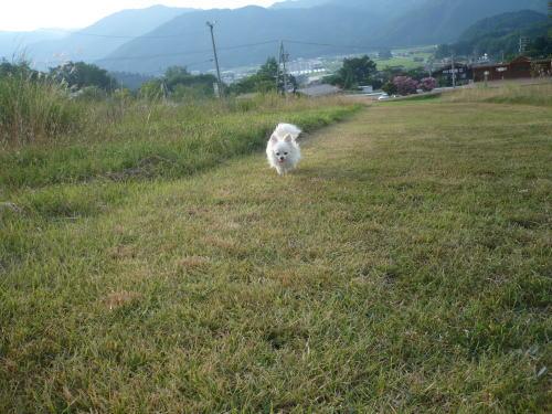 takayama200891213.jpg