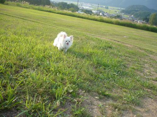 takayama200891215.jpg