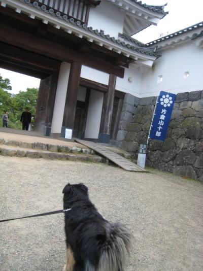shiroishijo2.jpg