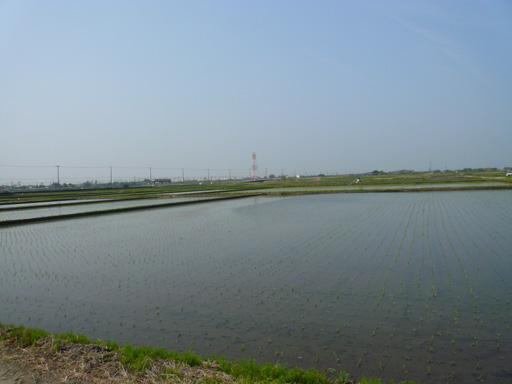 20090416-5.jpg